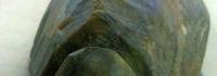 cursojks200405