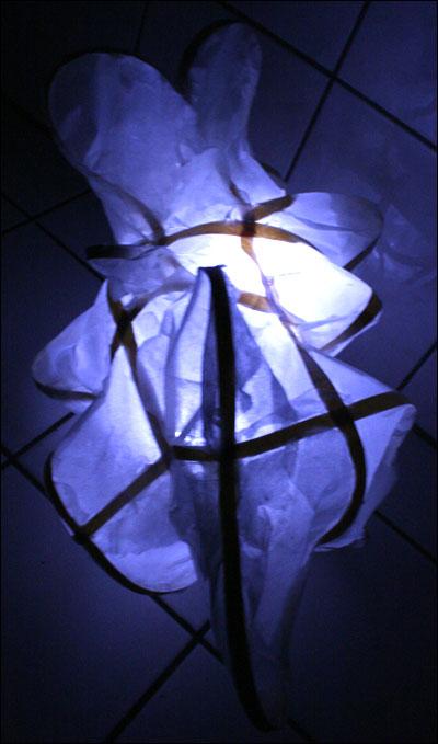 lampea2